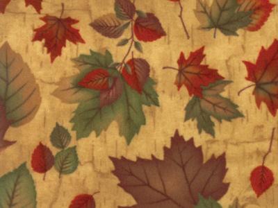 endangered-sanctuary-flannels